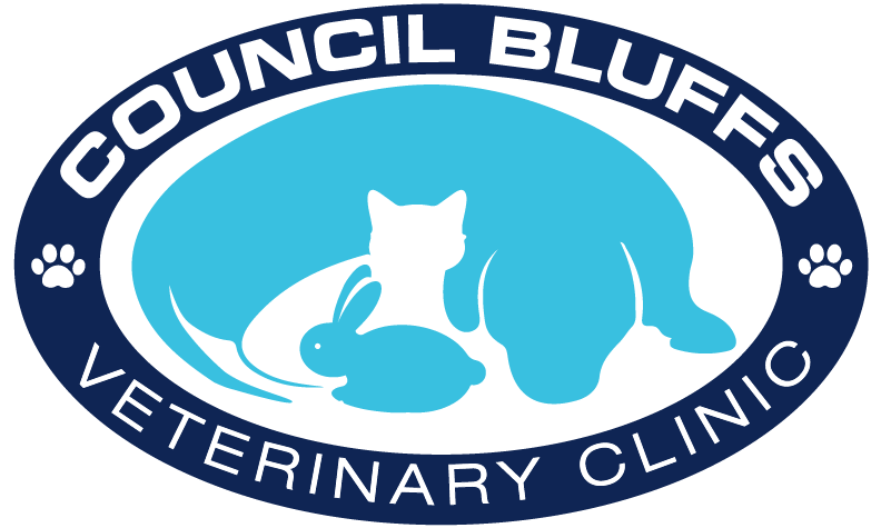 Council Bluffs Veterinary Clinic